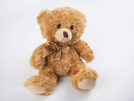 Cute teddy bear at isolated white background.