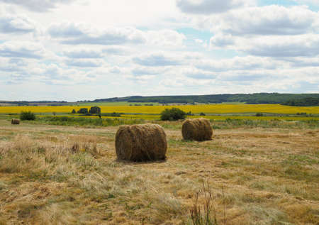 Hay bales on the field after harvest, France