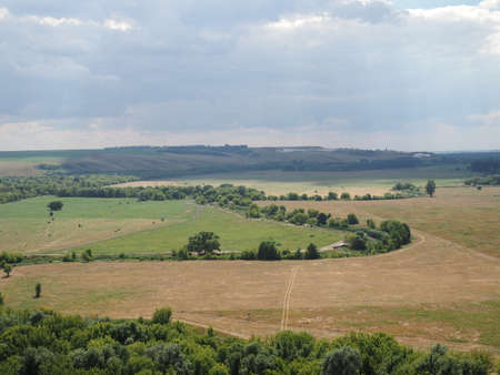 Steppe landscape. Lonely green plants .The steppe is woodless. Ravine in the steppe. Aerial photo