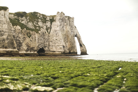 normandy: Falaise dAmont cliff at Etretat, Normandy, France