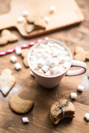 galletas de jengibre: Hot cocoa with marshmallows air and ginger cookies Foto de archivo