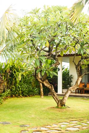 Bali villas, vacaciones en Asia Foto de archivo