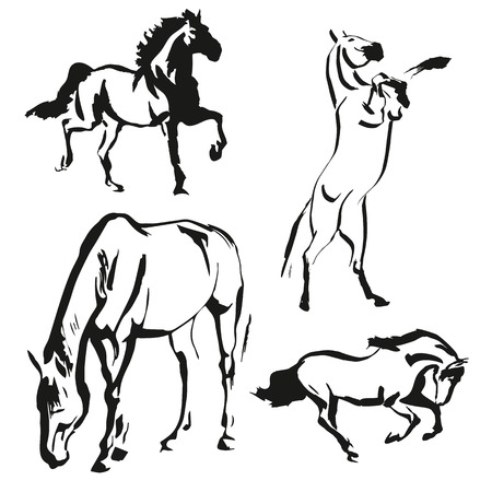 black and white farm animals: painting set of the three horses on the white background Illustration