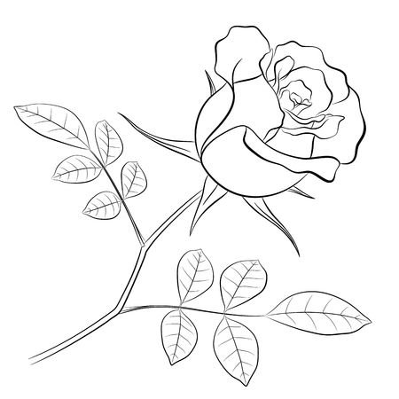 Black outline of a rose flower with a stem and two leaves, on a white background for coloring