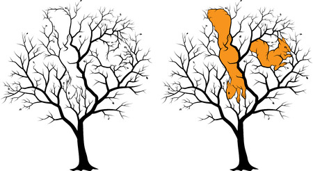 Two hidden squirrels on the tree, picture - riddle with solution. Black silhouette on white background, the solution is highlighted in orange. 矢量图像