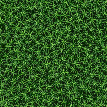 Seamless texture of fresh green grass, growing bush Stock Illustratie