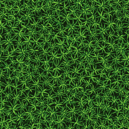 Seamless texture of fresh green grass, growing bush Çizim