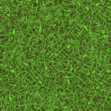 Seamless texture of summer green grass with small leaves, top view