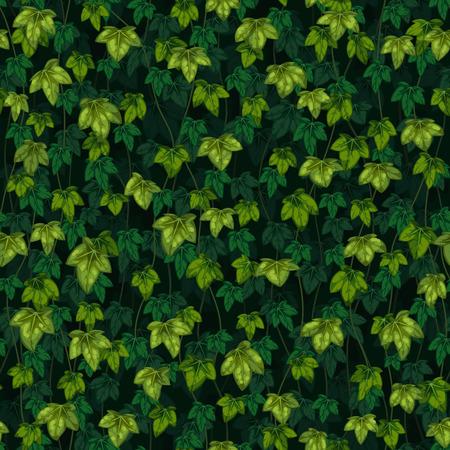 Tekstura wektor bezszwowe liście bluszczu na ciemnozielonym tle. Ilustracje wektorowe