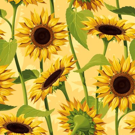 Seamless vector pattern of realistic sunflower flowers on a yellow background, with stems and leaves.