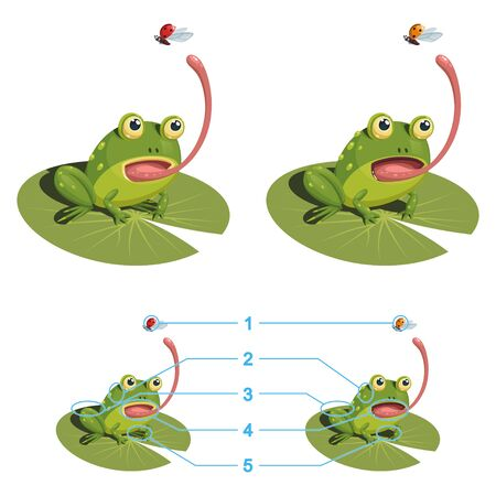 The frog is trying to catch a ladybug with its tongue. Find the five differences between the two pictures. Children's game picture is a riddle with a solution below.