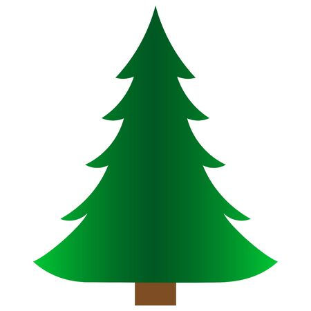 Green spruce icon. Isolated on a white background.Vector