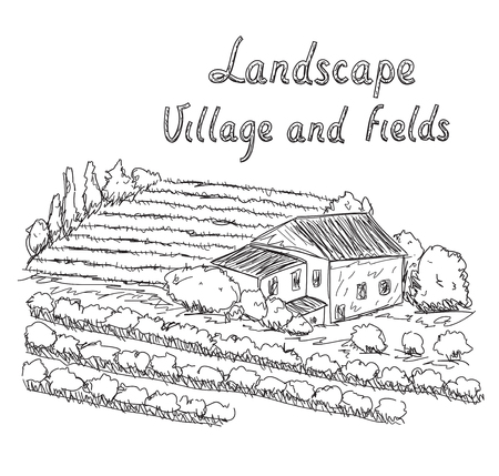 olive farm: Hand drawn illustration of field and village Illustration
