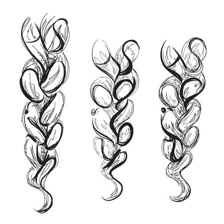 braid: Braid sketch of the line. Poster for hair salon