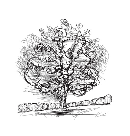 cypress tree: Hand drawn trees isolated on white. Doodles trees Illustration