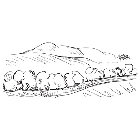 mountain view: Hand drawn landscape with fields and trees.