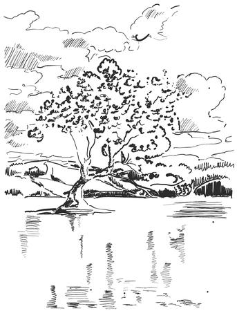 Landscape sketch. Tree near the lake