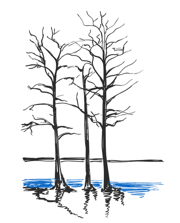 Landscape vector icon, sketch of a park bench and trees. Illustration