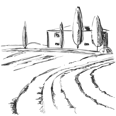 Hand made vector sketch of vineyard landscape. Fields
