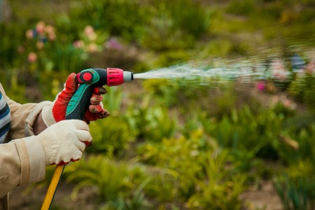 gardening and people concept - happy senior woman watering lawn by garden hose with sprayer at autumn Stock fotó