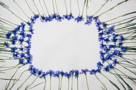 blue cornflowers bouquet, summer flowers on white background, floral background, beautiful small cornflowers close up flatlay
