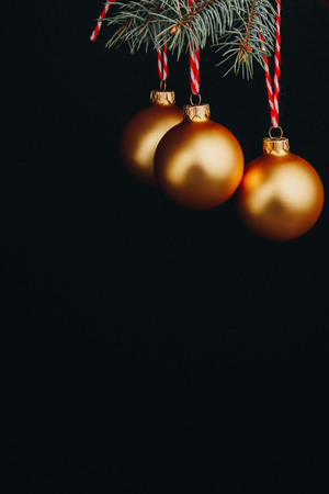christmas and new year gift-card. branches of fir-tree and decoration with golden balls on a black background isolated close up