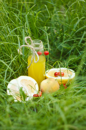 a bottle of homemade lemonade juice with cherry and citrus fruits lies on the grass outdoors. Picnic on nature in the park against the backdrop of trees with bright sunshine. healthy food, diet. Stock Photo