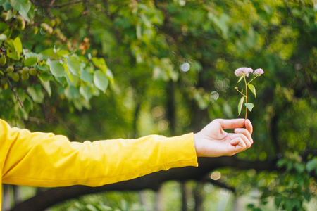 a man is holding a flower against the blurred background of trees and grass. bokeh, close-up, picnic, summer.