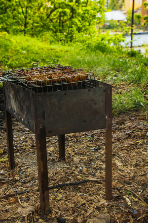 cubes of pickled meat in a grill grate at brazier. barbecue kebab on embers outdors. grilled picnic in nature. side view close up a background of green trees. Stock Photo