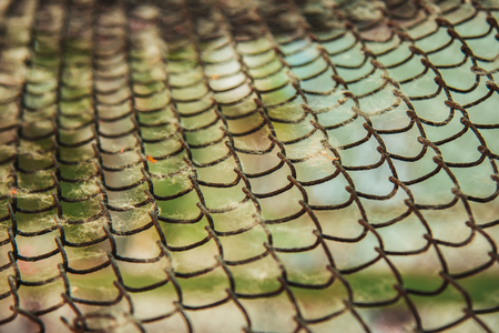 twisted woven metal mesh covered with poplar down on a blurred background close-up. fencing allergens on the street in summer. copy space.