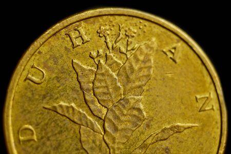 Coin ten Croatian lipa macro isolated on black background. Detail of metallic money close up. money of european country croatia.