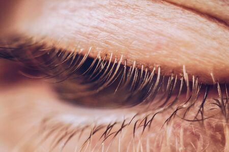 male eye close up. eyelashes in macro. upper and lower eyelid. Stock Photo