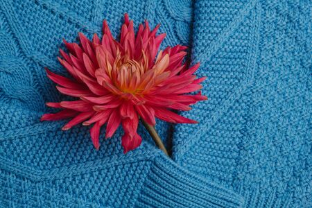 Pattern of colorful knitted sweaters closeup. Handmade merino wool product. A stack of folded clothes with flowers Stock fotó