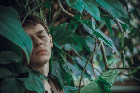 Portrait of a young man in green leaves. A nice guy is standing against a wall of green plants. A close-up of a white man in ivy thickets