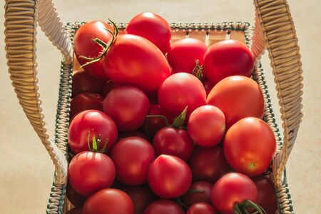Healthy eating Vegetables on the salad. Good harvest. Close-up. Fresh organic tomatoes in a basket on a wooden table in the garden