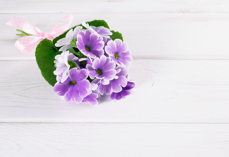 Bouquet of violet primroses on background of wooden planks in Shabby Chic style