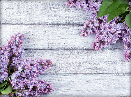 Lilac flowers on background of shabby wooden planks in rustic style Stock Photo