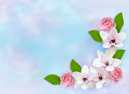 Spring floral background with blooming pink magnolia flowers and roses Stock Photo