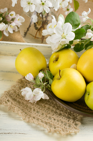 Yellow apples on the plate with twig of apple tree and knitted napkin on the wooden tray in Shabby Chic style Stock Photo