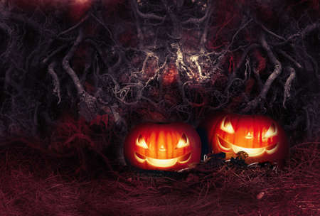 Halloween autumn festive still life with two evil smiling glowing pumpkins on straw and leaves on terrible spooky background of tangled tree roots in scary dark bloody colors