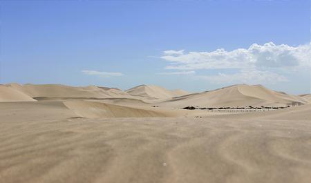 Düne in der Namib-Wüste