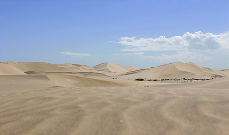 Dune dans le désert du namib