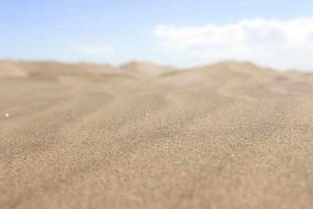 Dune in the namib desert