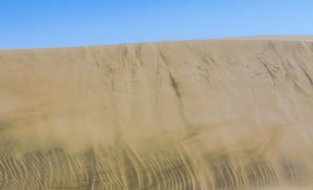 golden sand of african desert