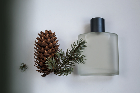 male perfume bottle and fir branch on a gray background Фото со стока