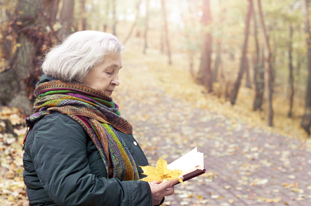 Elderly woman reading a book in the park Stock Photo