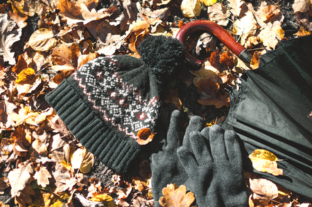 warm autumn teen accessories on the background of leaves