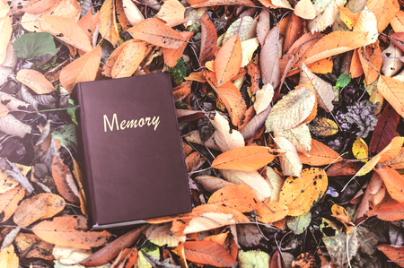 old Closed book in the park in colorful autumn leaves