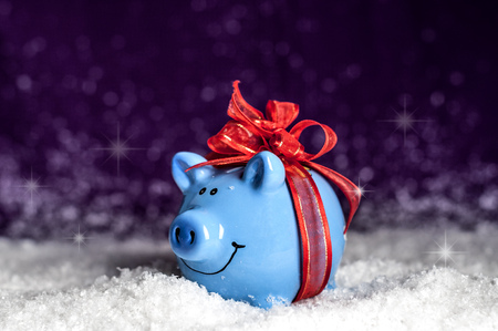 little blue piggy with a red bow in the snow
