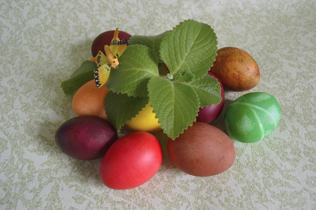 Easter Chicken Eggs Dyed With Food Coloring Sprig Of Mint And ...